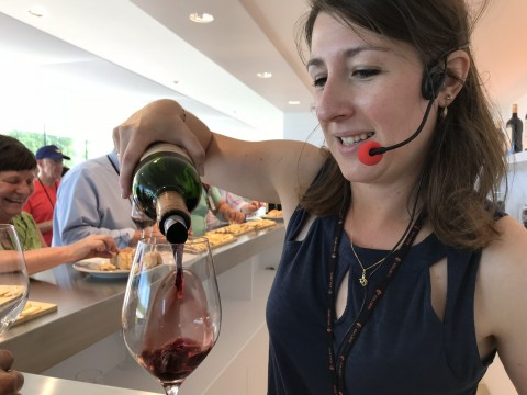 Bordeaux WineTasting